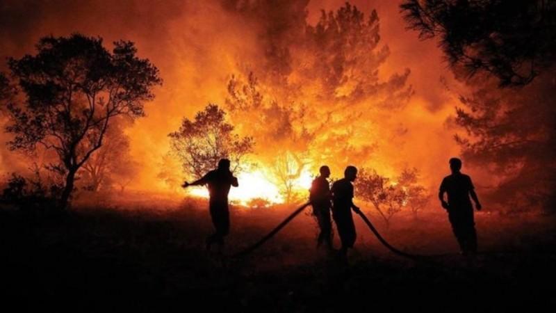 'Ülkedeki büyük yangınların hepsini söndürdük'